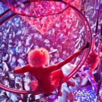 10 BEST NIGHTCLUBS AROUND THE WORLD