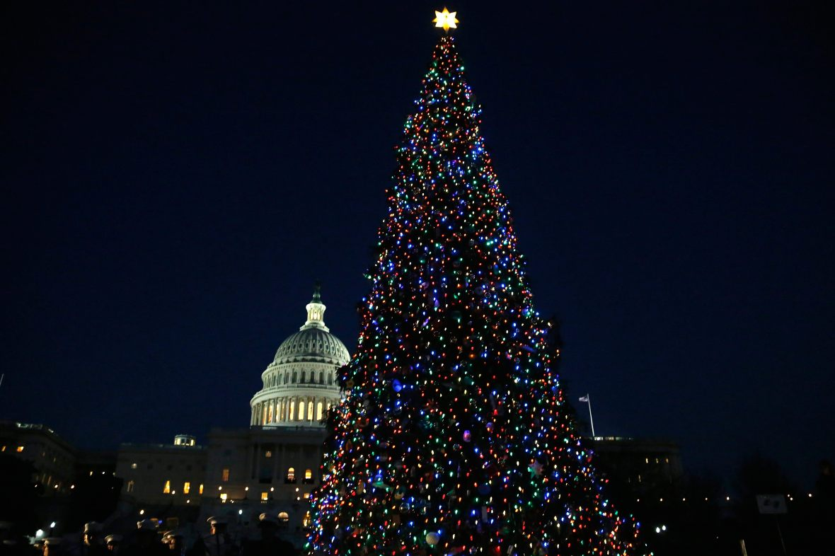 The U.S. Capitol Christmas Tree is lighted in Washington