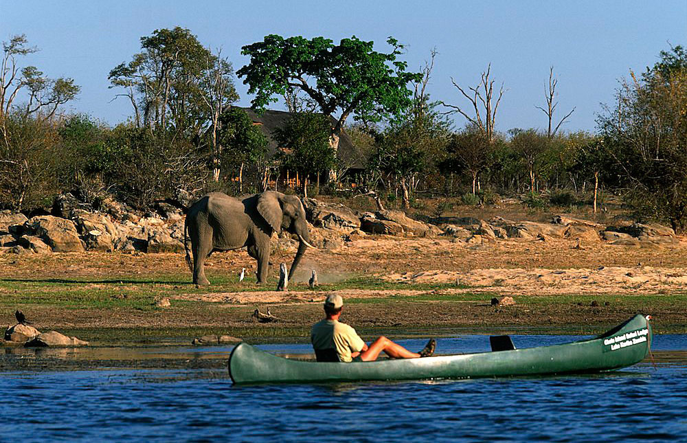 Chobe_National_Park_033
