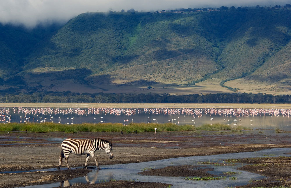 Ngorongoro_Conservation_Area_009