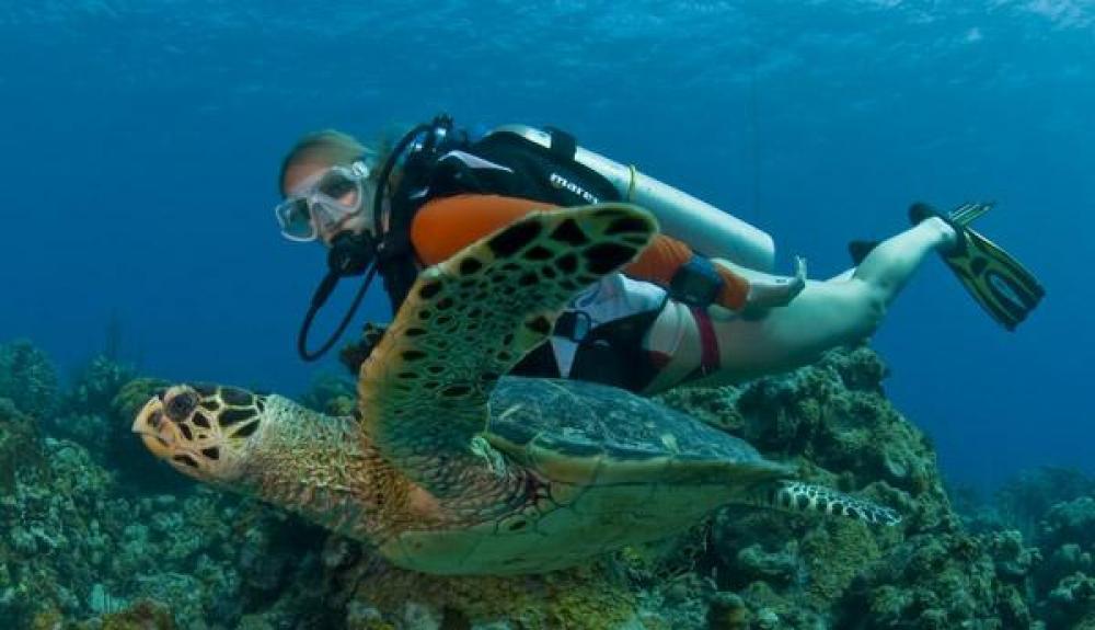 cayman_islands