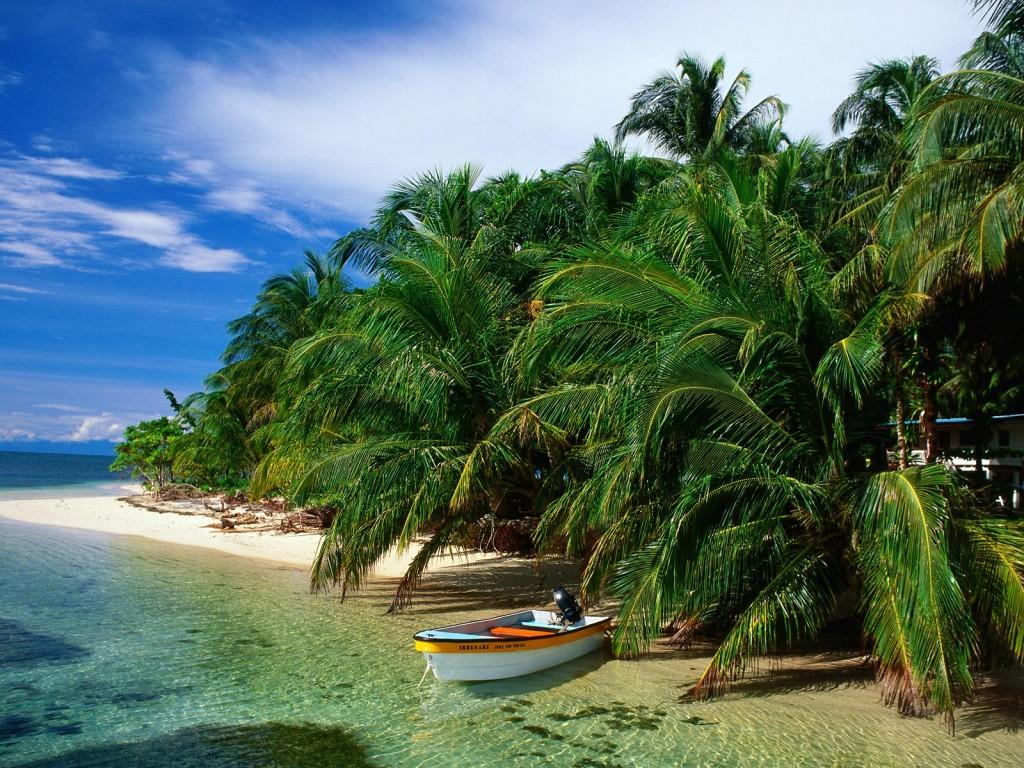 Cayo-Zapatillas-Bocas-del-Toro