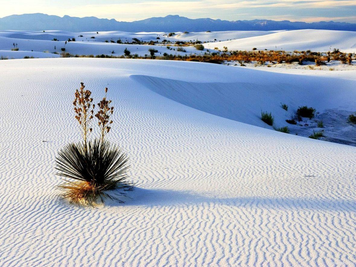 white-sands-national-monument