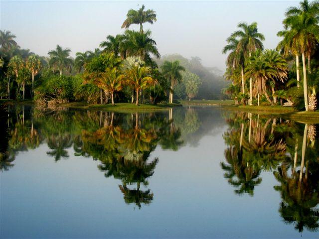 2 U2013 Fairchild Tropical Botanic Garden, Florida, USA. 2  Jardim Botanico  Tropica Fairchild, Florida, EUA. 2 U2013 Jardín Botánico Tropical Fairchild,  Florida, ...